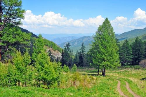 свежее дыхание ороктойского перевала
